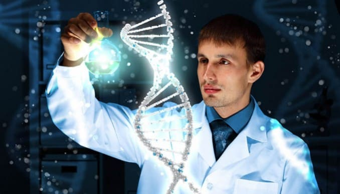 telomere length and aging