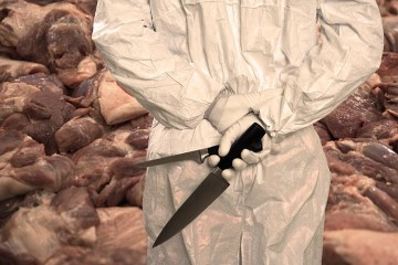 butcher in slaughterhouse with knives in hand