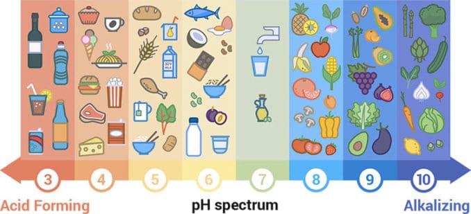 acid-forming vs. alkaline-forming foods