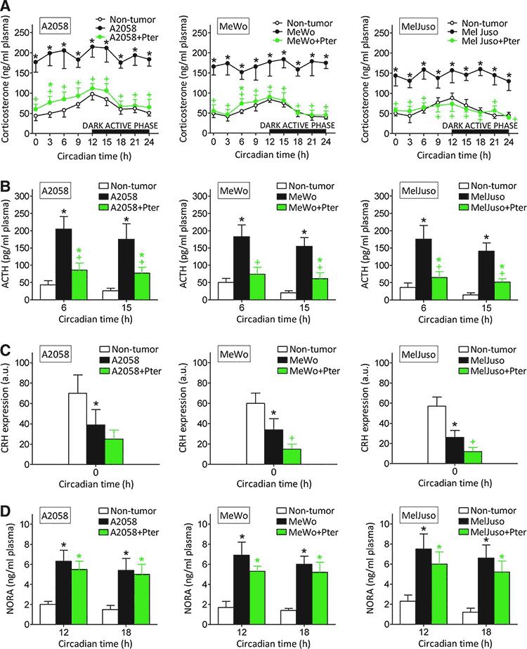 in vivo mice skin cancer study results