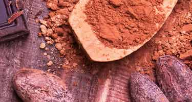 cocoa powder and raw beans