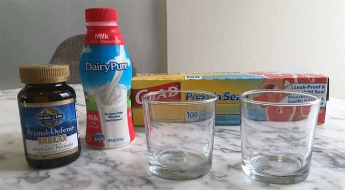 supplies for cow milk probiotic testing