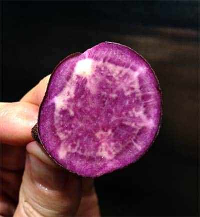 cross section of raw purple potato
