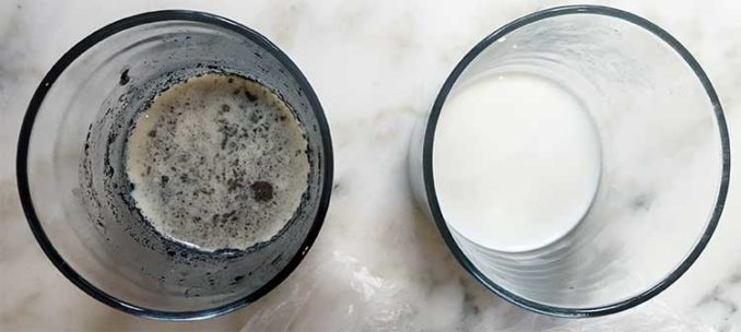 milk after 24 hours