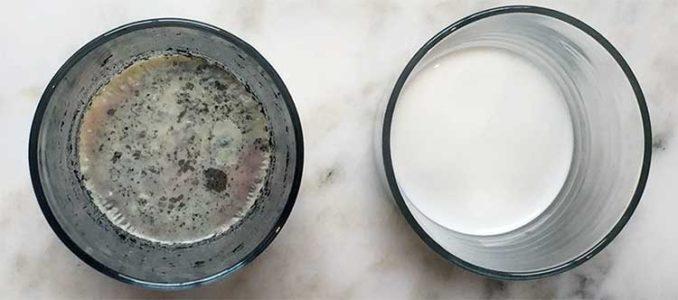 final probiotic potency in milk