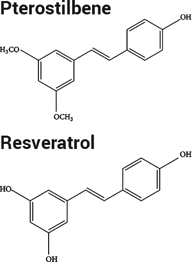 pterostilbene and resveratrol chemical structures