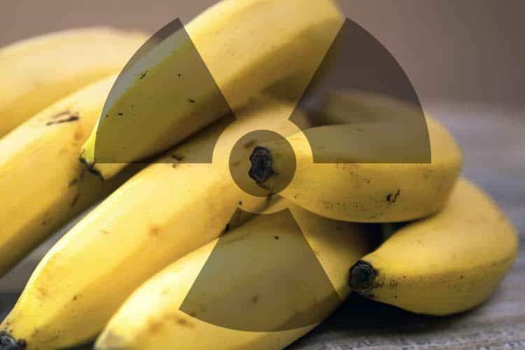 bananas with radiation symbol