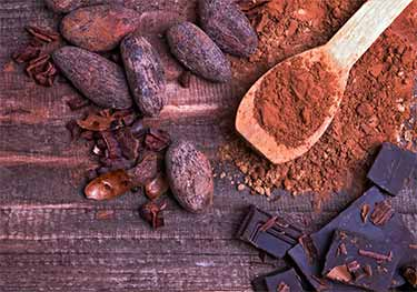 cacao beans, powder, bars