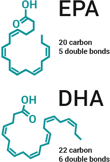 EPA and DHA molecular structures