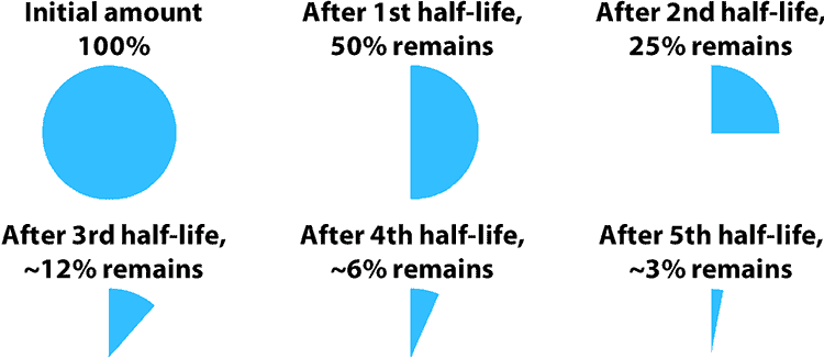 amount left after each half life