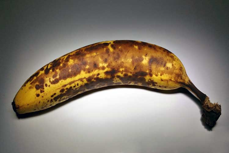 Do Bananas Cause Constipation or Make You Poop? This Decides