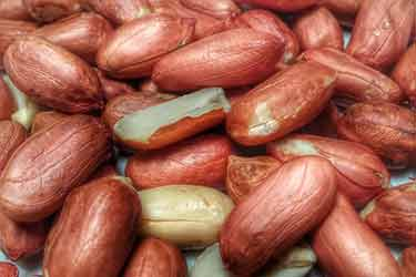 raw peanuts with red skin