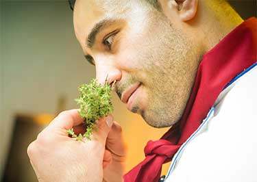 chef smelling fresh oregano