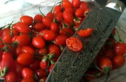 fresh sliced goji berry