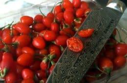 fresh sliced goji berry