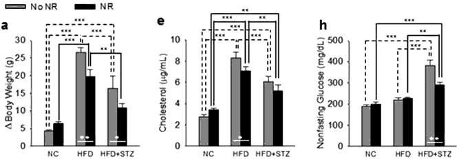 NR results in diabetic mice