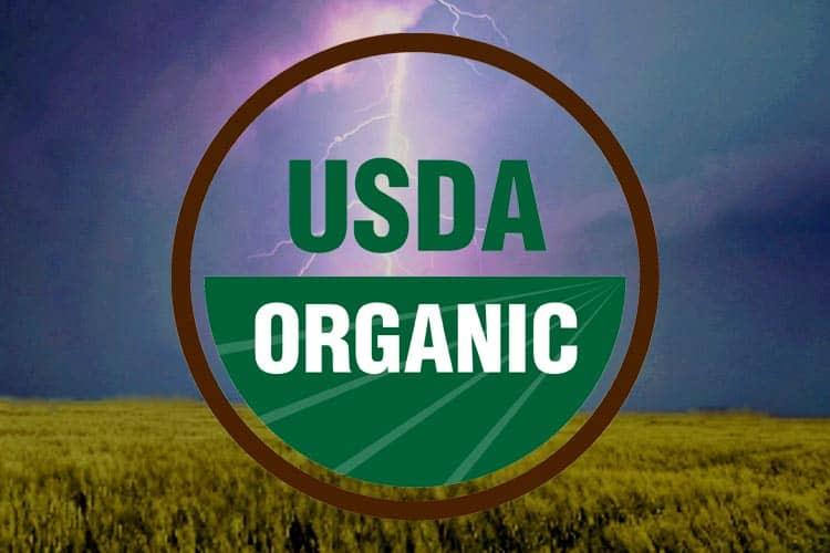 USDA organic logo over storm clouds
