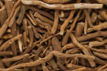 raw organic ashwagandha roots
