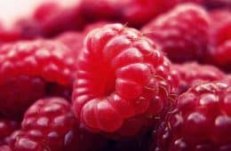 red raspberry closeup photo