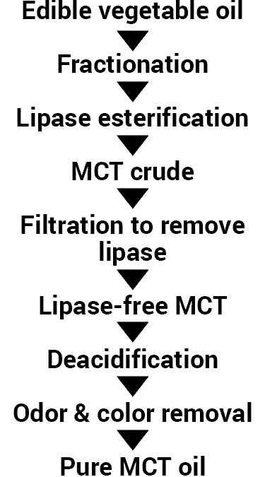 steps of how MCT oil is made