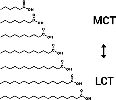 sizes of MCT vs. LCT lipids