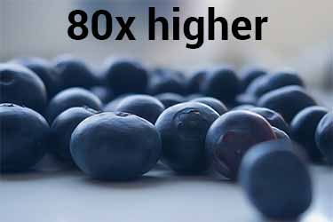 blueberry vs. myrrh antioxidant power