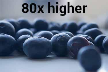 arándano vs. mirra poder antioxidante