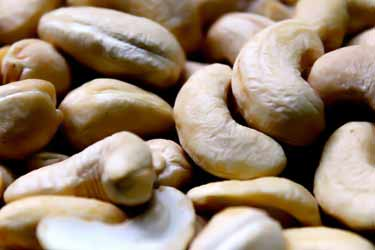 cashew nuts, close-up photo