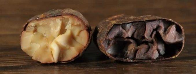 rare Peruvian white cacao beans
