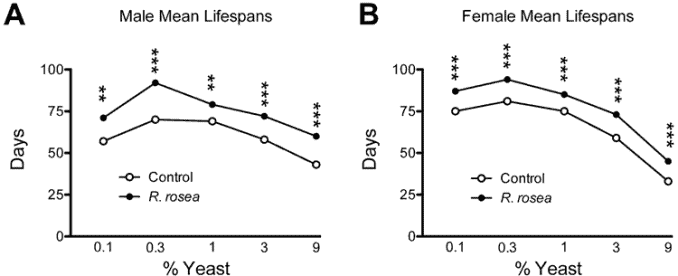 graphs showing rhodiola rosea anti-aging in yeast