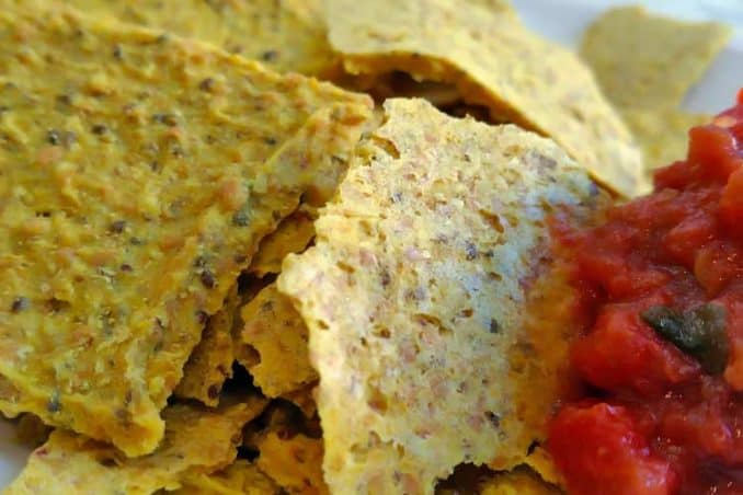 vegan raw tortilla chips with cheese flavor and organic salsa