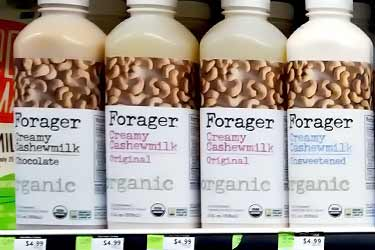 Forager raw cashew milk