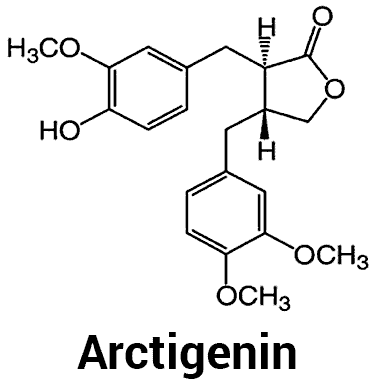 chemical structure of arctigenin molecule