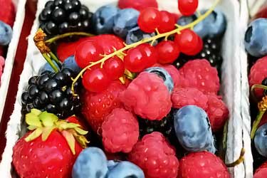 basket of raspberries, blueberries, strawberries, blackberries, and red currants