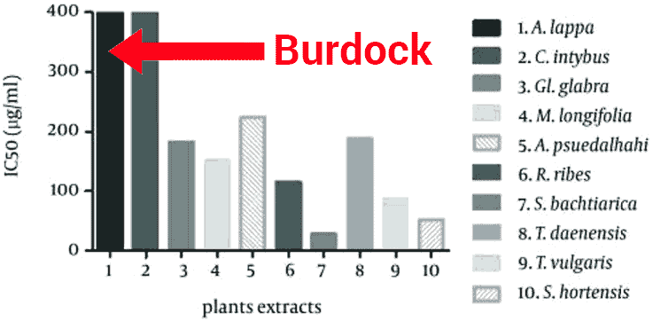 IC50 for burdock root on cancer proliferation