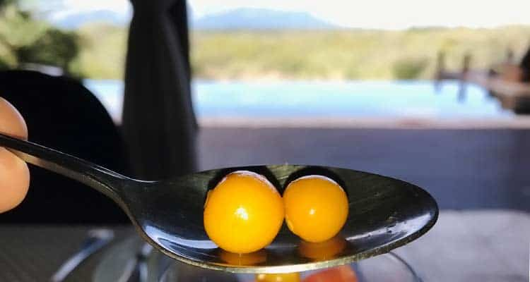 close-up photo of fresh golden berries on spoon