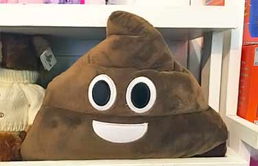 poop shaped pillow with smily face