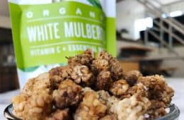 dried organic white mulberries