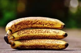 rotten or diseased Cavendish bananas on ground