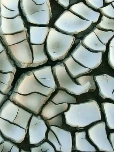 dried cracked clay on ground