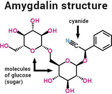 amygdalin molecule chemical structure