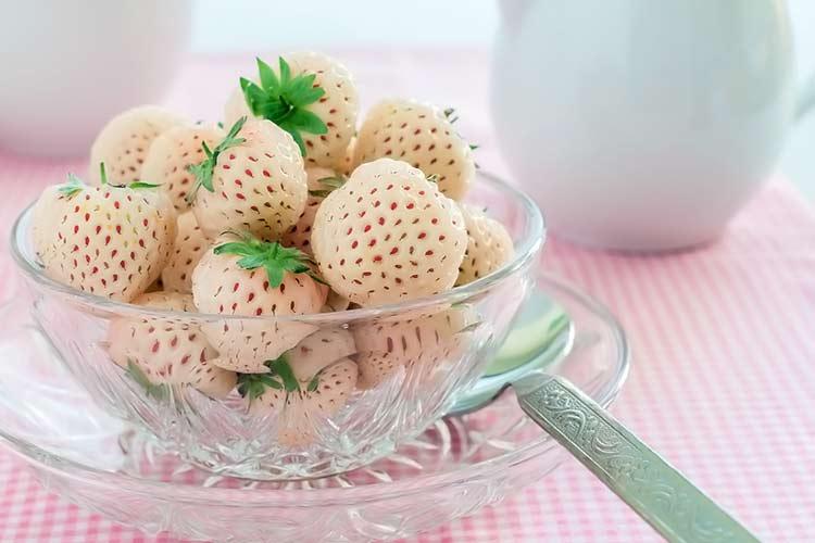 tazón de fresas blancas (bayas de hula)