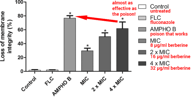 bar graph showing effectiveness of berberine against Candida yeast
