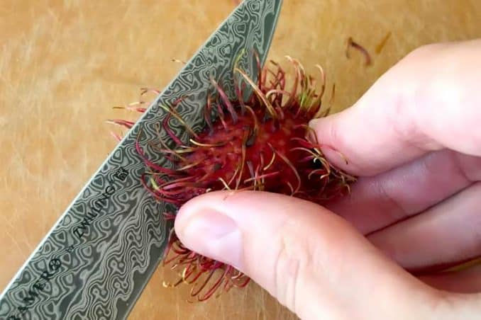 cutting into the fruit peel