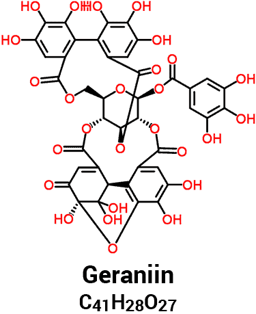 chemical structure of geraniin with molecular formula