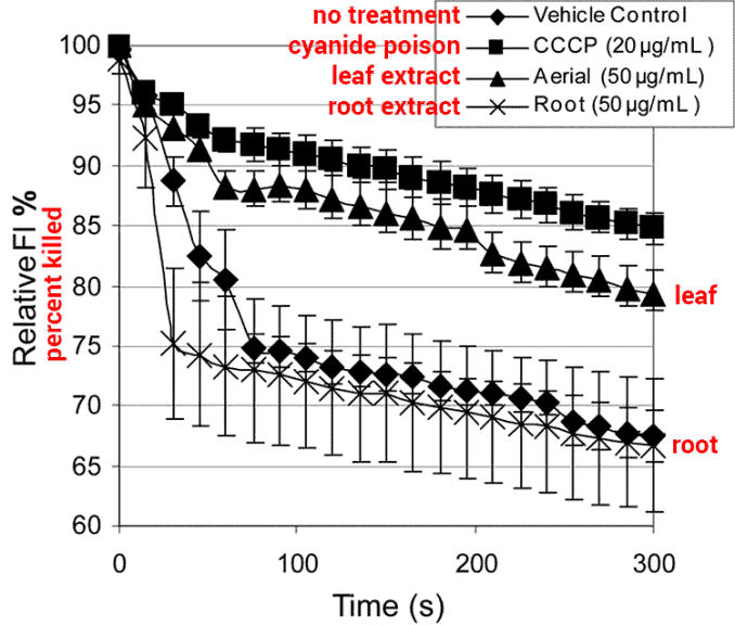 graph showing goldenseal antibiotic effects against staph infection