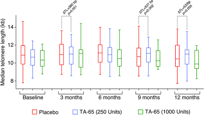 bar graphs showing astragalus telomere lengthening effects during 12 month treatment