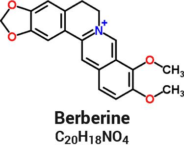 fórmula y estructura química de la molécula de berberina
