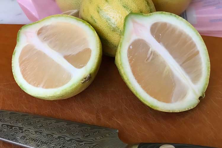 what the inside of a pink lemon looks like
