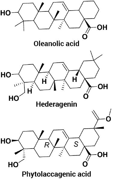 estructuras moleculares de 3 tipos de saponina encontrados en la quinua